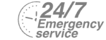24/7 Emergency Service Pest Control in Earl's Court, SW5. Call Now! 020 8166 9746